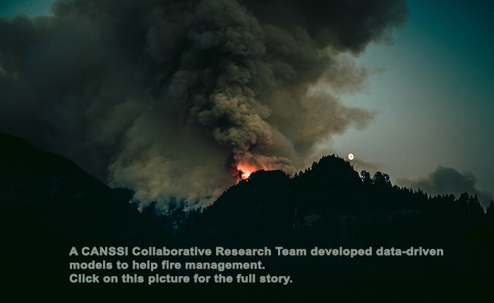 Data-driven models for wildland fire management